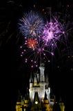 Vuurwerk in het Magische Koninkrijk Stock Foto's