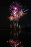 Vuurwerk in het park stock fotografie