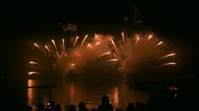 Vuurwerk in nachthemel Royalty-vrije Stock Fotografie