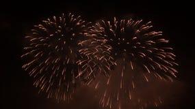 Vuurwerk in nachthemel Royalty-vrije Stock Foto's