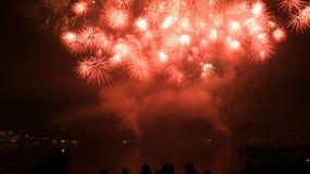 Vuurwerk in nachthemel Royalty-vrije Stock Afbeeldingen