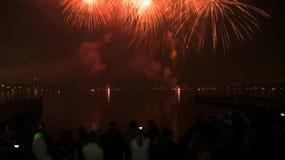 Vuurwerk in nachthemel Stock Afbeelding