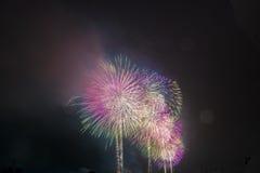 Vuurwerk NYC Royalty-vrije Stock Foto
