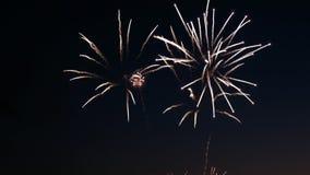 Vuurwerk op de vakantie van de stadsdag, grote uitbarstingen van begroeting op de nachthemel royalty-vrije stock afbeelding