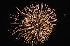 Vuurwerk op de zwarte hemel stock afbeelding