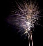 Vuurwerk op zwarte achtergrond Royalty-vrije Stock Foto's