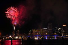 Vuurwerk over Miami stock foto