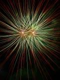 Vuurwerk in Park 1 Stock Foto