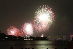 Vuurwerk in Sydney Royalty-vrije Stock Afbeelding