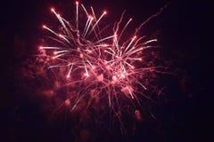 Vuurwerkexplosies in de nachthemel royalty-vrije stock afbeelding