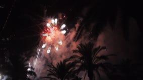 Vuurwerkveelvoud vuurwerk De kleurrijke nacht van de vuurwerk atn vakantie stock footage