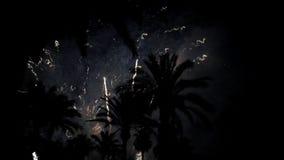 Vuurwerkveelvoud vuurwerk De kleurrijke nacht van de vuurwerk atn vakantie stock videobeelden