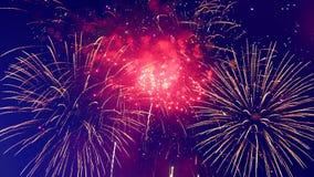 Vuurwerkvertoning in het midden van de donkere hemel stock videobeelden