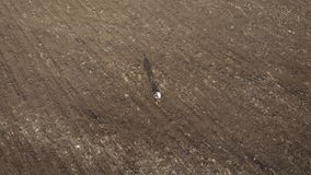 Vuxen bonde som undersöker det plogade fältet som förbereder land för att så Säsongsbetonat begrepp för jordbruks- arbeten lager videofilmer