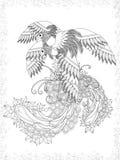 Vuxen färgläggningsida för fåglar Royaltyfri Foto