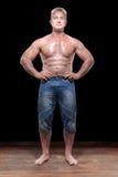 Vuxen muskulös modell fotografering för bildbyråer