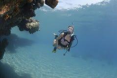 vuxen scuba för bikinidykarekvinnlig arkivbilder