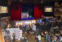 Vuxen underhållningexpo för AVN Royaltyfri Foto