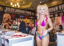 Vuxen underhållningexpo för AVN Fotografering för Bildbyråer