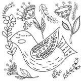 Vuxna människor för fol för färgläggningbok Fastställd vektorblask för Folk och whitillustration med härliga fåglar och blommor s Arkivfoton