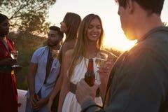 Vuxna vänner på ett parti på ett tak på solnedgången, slut upp royaltyfri foto