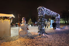 VVC (former HDNH) park in winter night, Moscow Royalty Free Stock Images