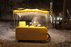 VVC (former HDNH) park in winter night, Moscow Stock Image