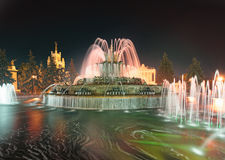 VVC (former VDNH) by night. Stone flower fountain. Moscow Stock Photography