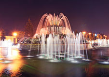 VVC (former VDNH) by night. Stone flower fountain. Moscow Royalty Free Stock Photo