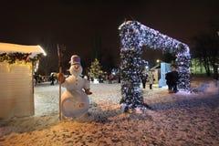 VVC (HDNH anterior) parque en noche del invierno, Moscú Imágenes de archivo libres de regalías