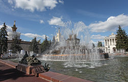VVC Moscow, Stone Flower Fountain Royalty Free Stock Photo