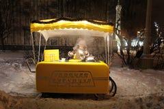 VVC (precedente HDNH) parco nella notte di inverno, Mosca Immagine Stock