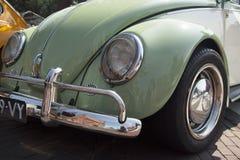 VW甲虫汽车 库存照片
