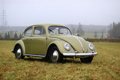 Vw甲虫1957年 库存照片