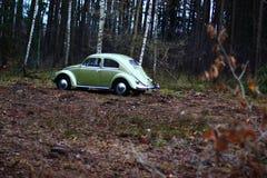 Vw甲虫1957年 免版税库存照片