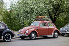 VW Beetle car Stock Photography