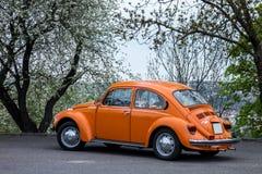VW Beetle car Royalty Free Stock Photo