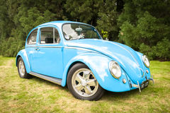 VW Beetle Stock Photos