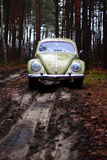 Vw beetle 1957. Retro Vw beetle 1957 forest royalty free stock photo