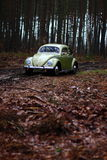 Vw beetle 1957. Retro Vw beetle 1957 forest royalty free stock photography