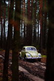 Vw beetle 1957 Royalty Free Stock Photo