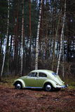 Vw beetle 1957. Retro Vw beetle 1957 r forest stock image