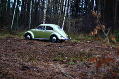 Vw beetle 1957. Retro Vw beetle 1957 r forest royalty free stock photos