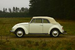 Vw beetle. White retro vw beetle cabriolet stock photo