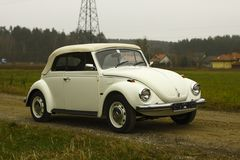 Vw beetle. White retro vw beetle cabriolet stock image