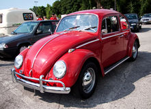 VW Bug Stock Photo