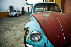 VW Bug Stock Photos