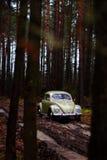 Vw ściga 1957 Zdjęcie Royalty Free