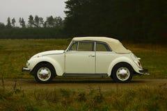 VW-kever Stock Foto