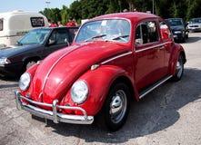 VW Pluskwa Zdjęcie Stock